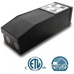 Magnitude M20L24DC-AR  LED Magnetic DC Driver